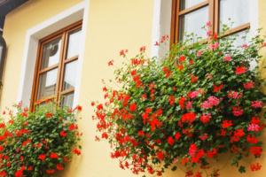 Balkonkaesten