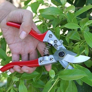 Aiskki Gartenschere 2 Stück, Astschere Gartenarbeit-Pflanzen-Blumenschere, Rosenschere Set Rebschere Floristenschere Traubenschere Handwerkzeug - 6