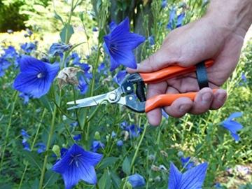 Garten Primus Gartenschere, Rosenschere, Rebschere, Floristenschere, Wunderschere, orange/silber, 18,1 x 4,9 x 1,8 cm, 01040 - 4