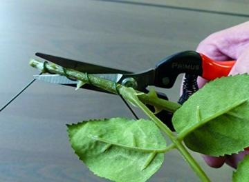 Garten Primus Gartenschere, Rosenschere, Rebschere, Floristenschere, Wunderschere, orange/silber, 18,1 x 4,9 x 1,8 cm, 01040 - 5