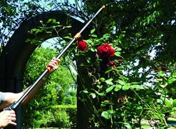 garten-primus-rosenschere-rosenkavalier-teleskopierbar-schwarz-orange-1375-x-9-x-31-cm-01410-2