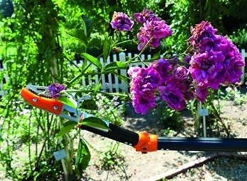garten-primus-rosenschere-rosenkavalier-teleskopierbar-schwarz-orange-1375-x-9-x-31-cm-01410-4