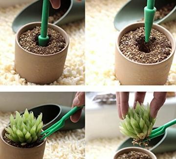 green24-doppelpack-2-pikiersets-aus-pikierstab-und-setzstab-fuer-saemlinge-jungpflanzen-saatgut-pflanzholz-set-zur-vermehrung-2