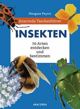 anaconda-taschenfuehrer-insekten-70-arten-entdecken-und-bestimmen-1