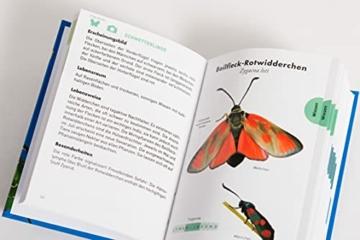 anaconda-taschenfuehrer-insekten-70-arten-entdecken-und-bestimmen-7