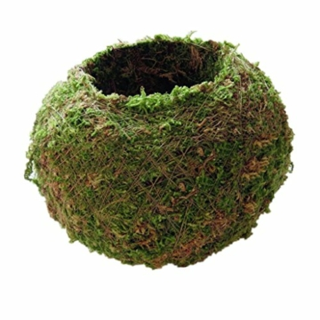 baoblaze-kreative-moos-pflanzschale-kugel-from-12-cm-1