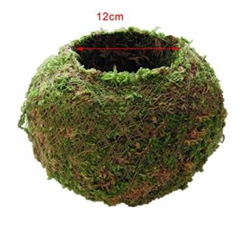 baoblaze-kreative-moos-pflanzschale-kugel-from-12-cm-4