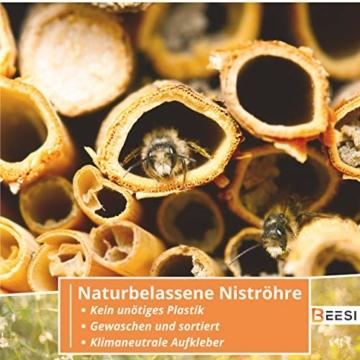 beesi-nisthuelsen-stroh-20-cm-lang-fuer-wildbienen-i-durchmesser-3-5-mm-inkl-e-book-i-nistroehren-fuer-insektenhotel-i-nisthilfe-fuer-wildbienen-200x-halme-3