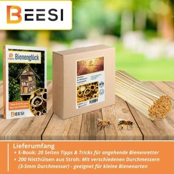 beesi-nisthuelsen-stroh-20-cm-lang-fuer-wildbienen-i-durchmesser-3-5-mm-inkl-e-book-i-nistroehren-fuer-insektenhotel-i-nisthilfe-fuer-wildbienen-200x-halme-4