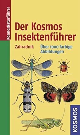 der-kosmos-insektenfuehrer-kosmos-natur-klassiker-1