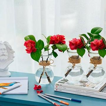 klarglasvasen-fuer-blumen-mit-schnurseil-3-teilige-gluehbirnenhyazinthenvasen-bud-avocado-vase-edelwickenvase-fuer-hydroponikpflanzen-narzissen-orchideen-fuer-desktop-tisch-innenfensterbank-dekor-3