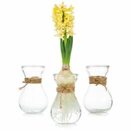 klarglasvasen-fuer-blumen-mit-schnurseil-3-teilige-gluehbirnenhyazinthenvasen-bud-avocado-vase-edelwickenvase-fuer-hydroponikpflanzen-narzissen-orchideen-fuer-desktop-tisch-innenfensterbank-dekor-1