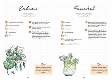 mein-garten-das-illustrierte-gartenbuch-mit-gaertnerwissen-pflanzplaenen-fuer-hochbeete-und-co-sortenempfehlungen-und-praktischen-listen-fuer-das-eigene-planung-bienenfreun