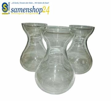samenshop24-hyazinthenglaeser-klar-3-stueck-ideal-fuer-praeparierte-hyazinthen-vase-fuer-schnittblumen-deko-premium-qualtitaet-2