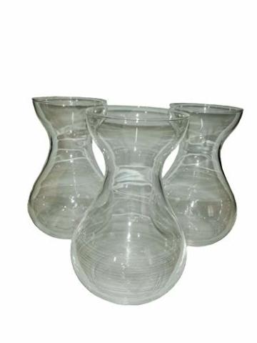 samenshop24-hyazinthenglaeser-klar-3-stueck-ideal-fuer-praeparierte-hyazinthen-vase-fuer-schnittblumen-deko-premium-qualtitaet-1