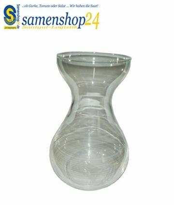 samenshop24-hyazinthenglas-klar-1-stueck-ideal-fuer-praeparierte-hyazinthen-vase-fuer-schnittblumen-deko-premium-qualltitaet-2