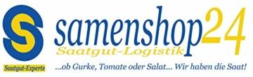 samenshop24-hyazinthenglas-klar-1-stueck-ideal-fuer-praeparierte-hyazinthen-vase-fuer-schnittblumen-deko-premium-qualltitaet-4