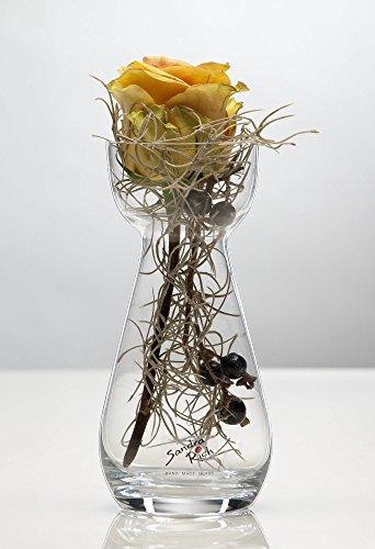 sandra-rich-6x-glasvase-hyacinth-hyazinthenglas-vase-glas-blumenvase-tischvase-17-cm-1