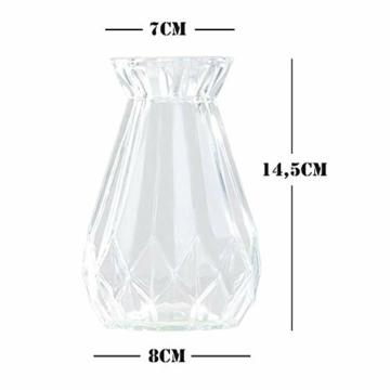 toruiwa-4x-hyazinthe-glasvasehyazinthenglasmhyazinthen-glastransparent-blueten-vasenfuer-sukkulenten-luftanlagen-pflanzen-dekoration145x8cmwbrg-2