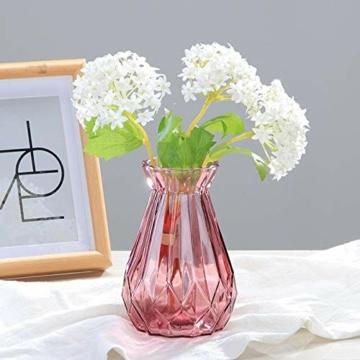 toruiwa-4x-hyazinthe-glasvasehyazinthenglasmhyazinthen-glastransparent-blueten-vasenfuer-sukkulenten-luftanlagen-pflanzen-dekoration145x8cmwbrg-3