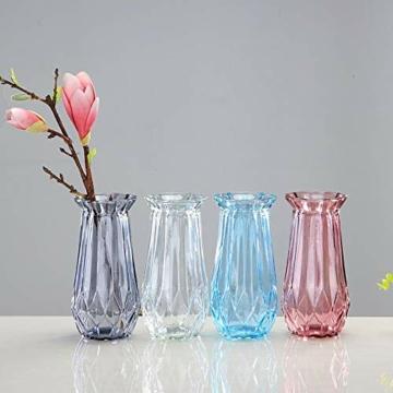 toruiwa-4x-hyazinthe-glasvasehyazinthenglasmhyazinthen-glastransparent-blueten-vasenfuer-sukkulenten-luftanlagen-pflanzen-dekoration145x8cmwbrg-4