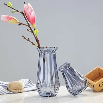 toruiwa-4x-hyazinthe-glasvasehyazinthenglasmhyazinthen-glastransparent-blueten-vasenfuer-sukkulenten-luftanlagen-pflanzen-dekoration145x8cmwbrg-5