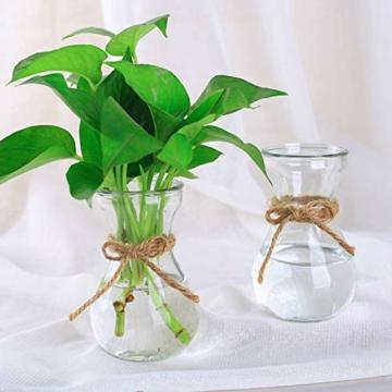 toruiwa-hyazinthe-glasvase-hydrokultur-glas-vase-blueten-vasen-fuer-hyazinthe-sukkulenten-luftanlagen-pflanzen-dekoration-14-5-6-5-7-5cm-transparent-6-stueck-3