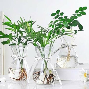 toruiwa-hyazinthe-glasvase-hydrokultur-glas-vase-blueten-vasen-fuer-hyazinthe-sukkulenten-luftanlagen-pflanzen-dekoration-14-5-6-5-7-5cm-transparent-6-stueck-5