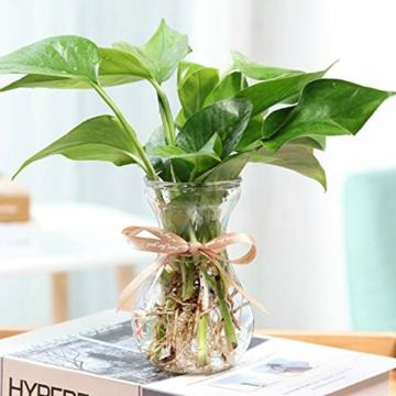 toruiwa-hyazinthe-glasvase-hydrokultur-glas-vase-blueten-vasen-fuer-hyazinthe-sukkulenten-luftanlagen-pflanzen-dekoration-14-5-6-5-7-5cm-transparent-6-stueck-6