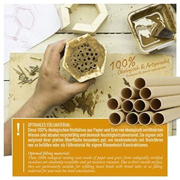 wildtier-herz-i-200-insektenhotel-nisthuelsen-o-6-und-8-mm-e-book-laengere-lebensdauer-als-papproehrchen-aus-papier-nistroehren-fuellmaterial-nisthilfe-bienen-wildbienen-2
